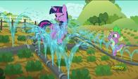 S06E10 Twilight i Spike pomagają przy podlewaniu roślin