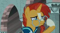 Sunburst straightening his glasses S7E26
