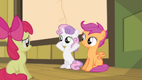Sweetie Belle smiling at Apple Bloom S4E17