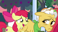 """Apple Bloom """"I didn't even know was missin'"""" S7E13"""