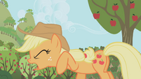 Applejack Why of all the S1E04