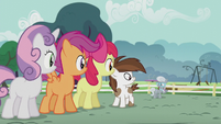 CMC and Pip look at Silver Spoon S5E18