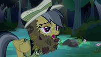 Daring Do in leafy disguise S4E04
