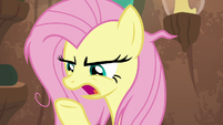 """Fluttershy """"what do you mean that's the problem?"""" S9E18"""