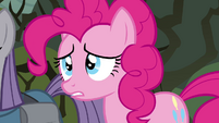 "Pinkie Pie ""what's wrong"" S4E18"