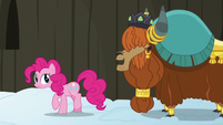 Prince Rutherford -yak not mad at pink pony- S7E11