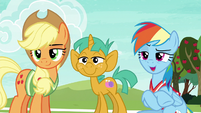 Rainbow Dash --you two, obviously!-- S6E18