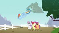 Rainbow Dash kicking cloud S2E23