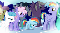 Rainbow Dash lands disappointedly S3E12