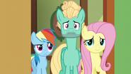S06E11 Fluttershy, Zephyr i Dash