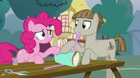Pinkie Pie helping Mudbriar wrap his present S8E3