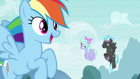 Rainbow Dash sees the Breezies coming S4E16