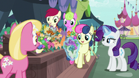 Rarity chooses flowers for Sweetie Drops S7E19