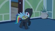 S2E16 Rainbow Dash z książką