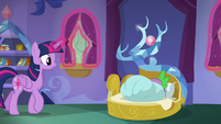 Twilight opening Spike's curtains S8E11