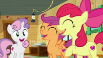 "CMC ""Helping other ponies!"" S6E4"
