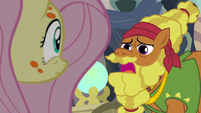 Cattail talking about Zecora S7E20