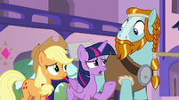 Twilight -we were trying to tell you- S8E21