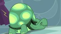 Tank wants to sleep S5E5