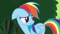"""Rainbow Dash """"you were right, Twilight"""" S4E04"""