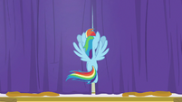 Rainbow Dash drawing the curtains closed S8E5