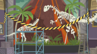 Skull falls off of dinosaur skeleton display EGDS1