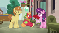 Sugar Belle accepting roses from Feather Bangs S7E8