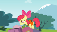 Apple Bloom 'Uh-oh' S4E09