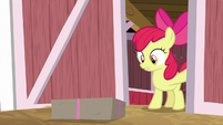 Apple Bloom finds a package on the ground S8E10