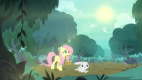 Fluttershy and Angel in the forest S8E18