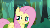 Fluttershy blushing embarrassed S4E18