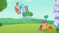 Rainbow carries cardboard wings away S6E14