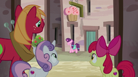 CMCs and Big Mac watch Sugar Belle from alleyway S7E8