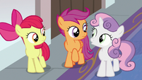 Cutie Mark Crusaders look at each other S8E12