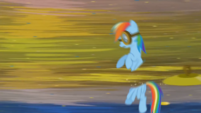 FANMADE Rainbow Dash cut by cymbals