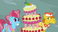 Mr and Mrs Cake worried S2E24