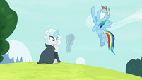 Rainbow Dash happy that she helped Rarity S7E19