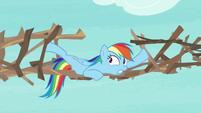Rainbow Dash securing her bridge supports S8E9