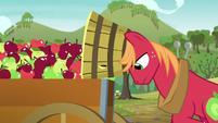 Big Mac putting apples into a cart S6E4