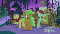 Earth ponies throwing the food away S9E17