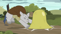 Hunchbacked pony slams bell on top of filly S7E26