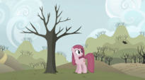 Pinkie Pie looking at floating leaf S3E13