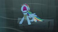 Rainbow yelling S5E8