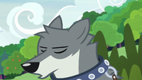Sandra the wolf sighing heavily S9E18