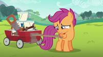 Scootaloo tries to talk to Rainbow Dash S6E14