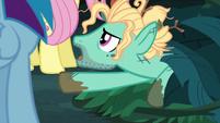 "Zephyr ""helped save Equestria, like, a dozen times"" S6E11"