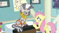 """Fluttershy """"this is all my fault!"""" S7E20"""