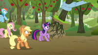 Mane Six see tree ripped out of the ground S9E13