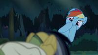 Rainbow Dash wondering what Daring's doing S4E04