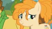 S07E13 Pear Butter uśmiecha się do Bright Maca
